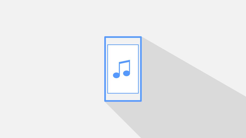 radio e playlist